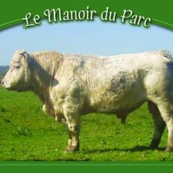 """Patois"" taureau charolais."