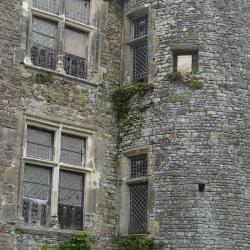 Fenêtres à colonette, partie XVième.